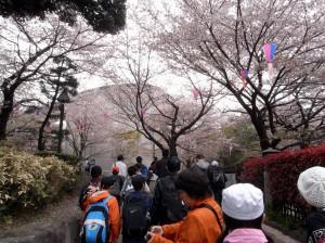 まだ桜の残る飛鳥山から、いざ出発!