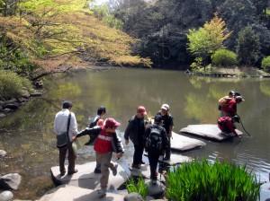 東大構内にこんな池が。都会のオアシスです。